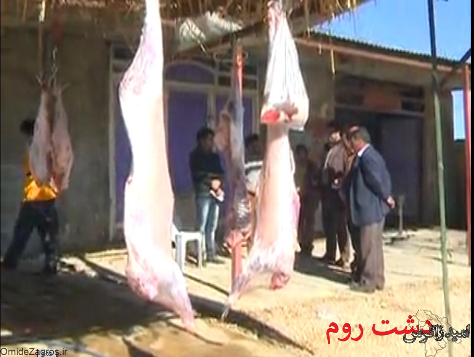 پلمپ ۲۰ مرکز عرضه غیرمجاز گوشت دام در یاسوج